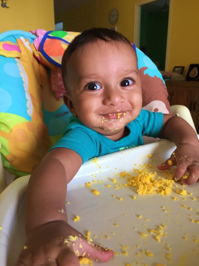 Baby, sitting on a high chair, eating eggs on his own and smiling