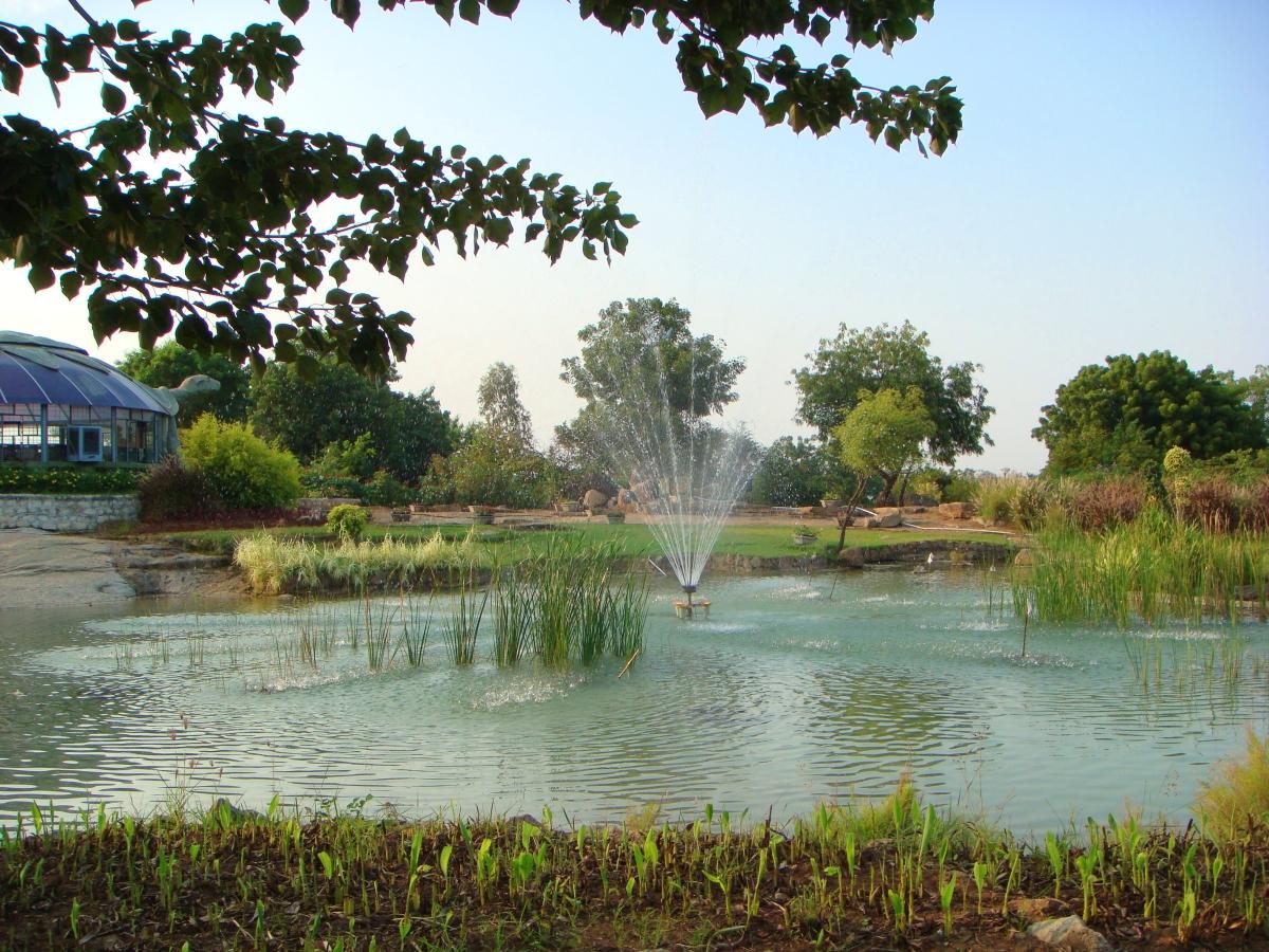 fountain at the botanical gardens k