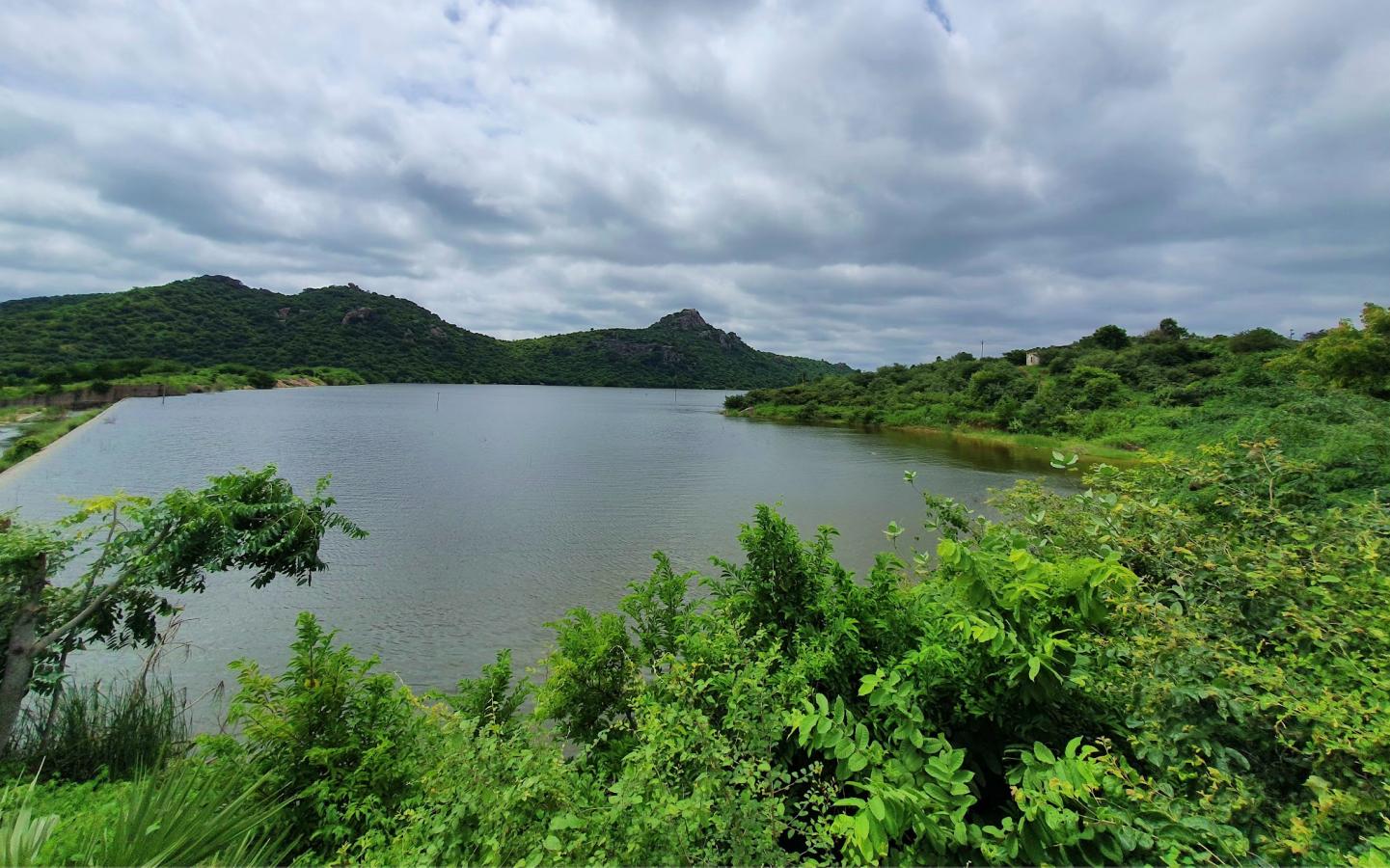 indira sagar pond with blue skies above and lush greenery around