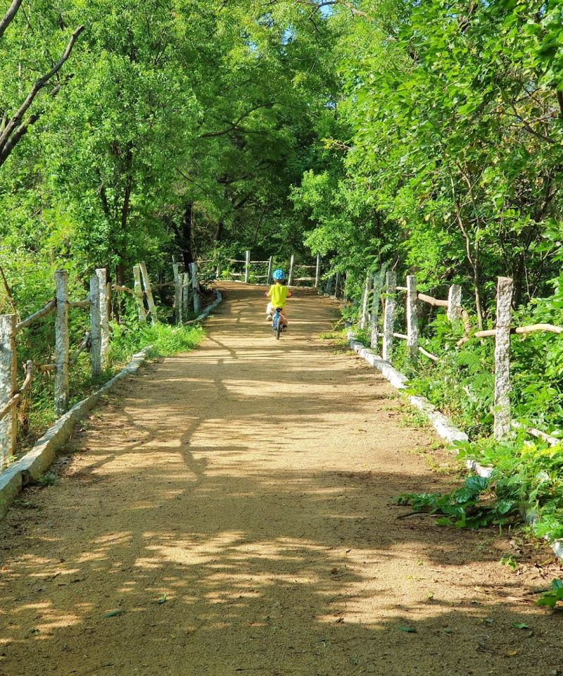 child cycling on a natural trail surrounded by trees